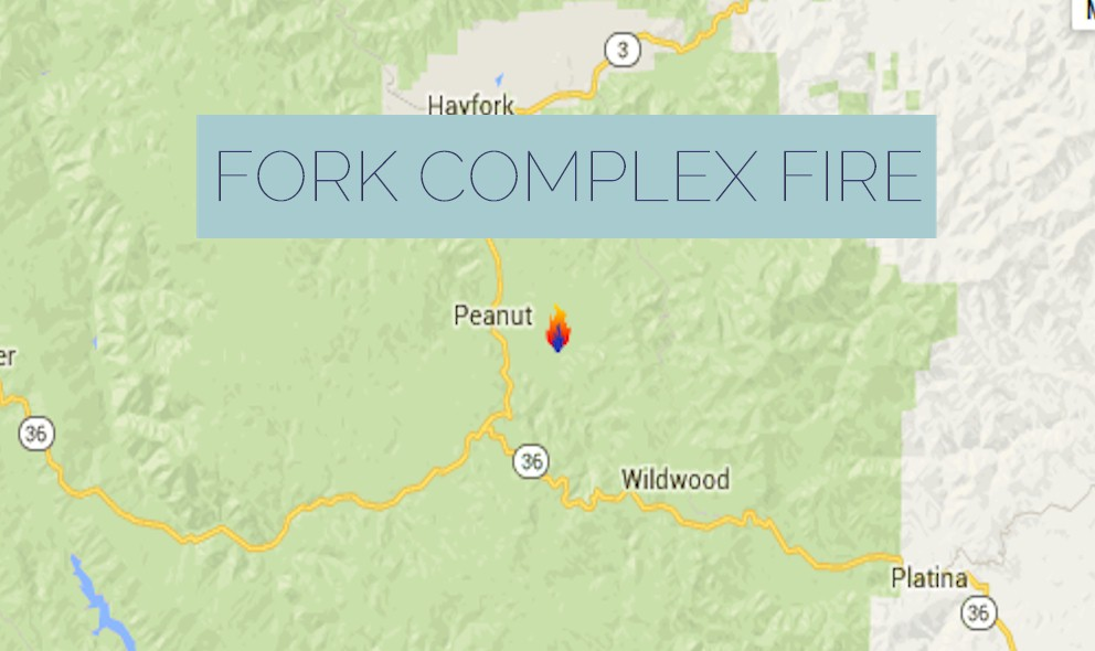 Fork Complex Fire 2015: California Wildfire Evacuates Hyampom