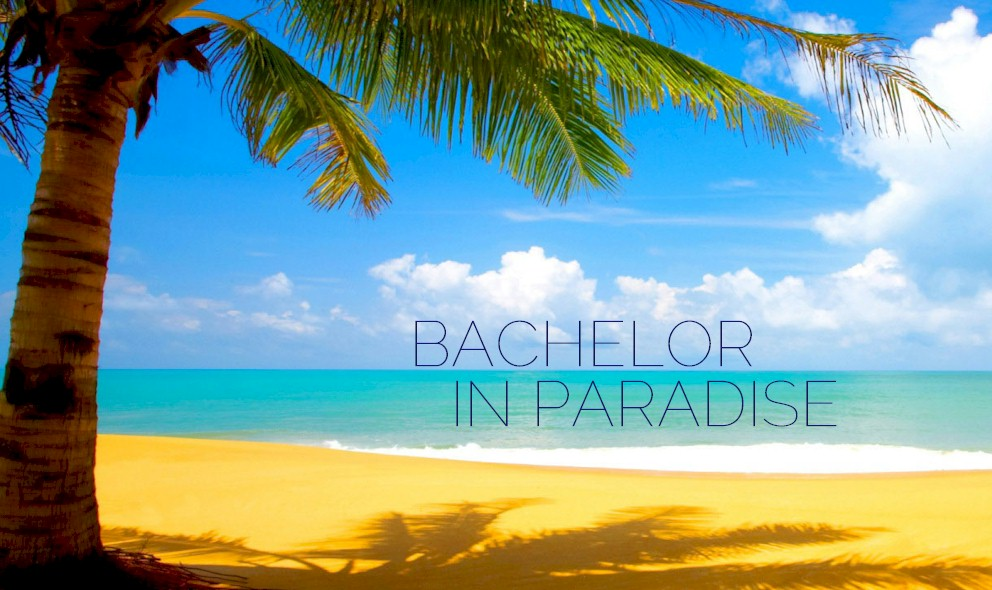 Bachelor in Paradise Winner 2015: Who Wins Bachelor in Paradise Finale