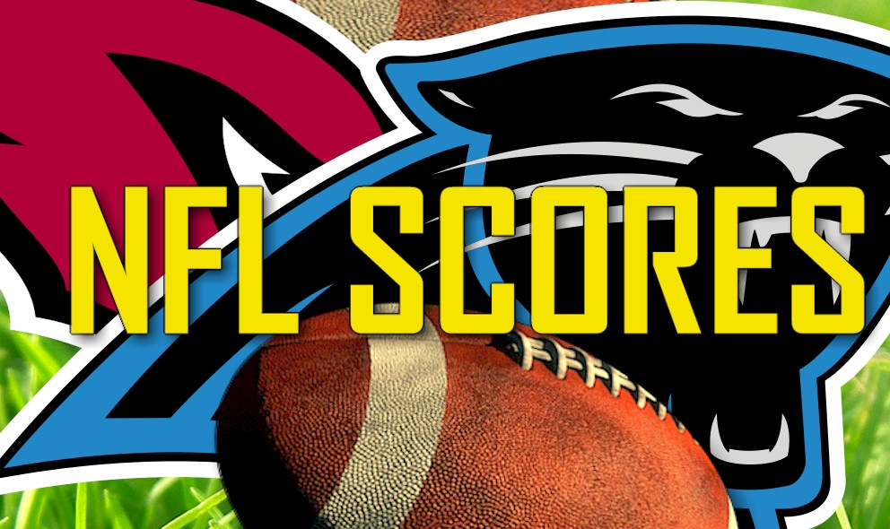 NFL Scores: Cardinals vs Panthers Score Ignite NFL Playoff Results 2016
