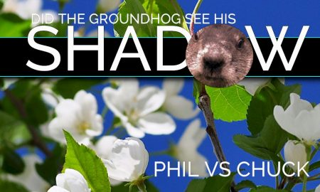 Did Groundhog See His Shadow Today: Did Phil See His ...